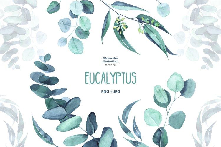 Watercolor eucalyptus example image 1