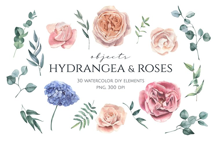 Hydrangea and Roses Watercolor Set example image 1