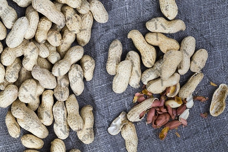 Partially peeled peanut ods. example image 1