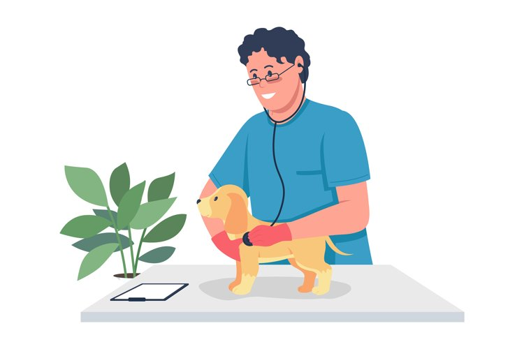 Veterinarian doctor holding puppy color vector character