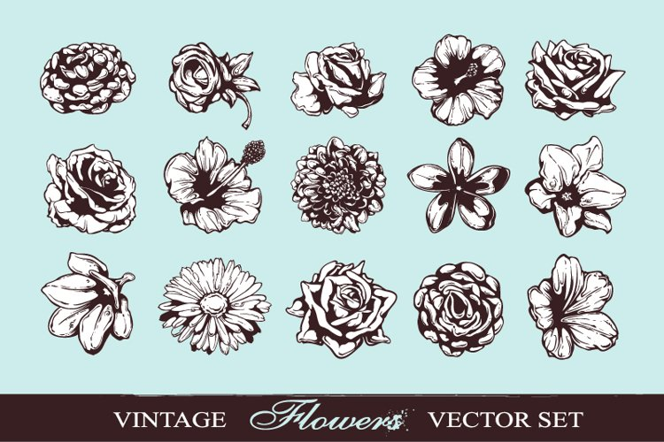 Hand-drawn Flowers example