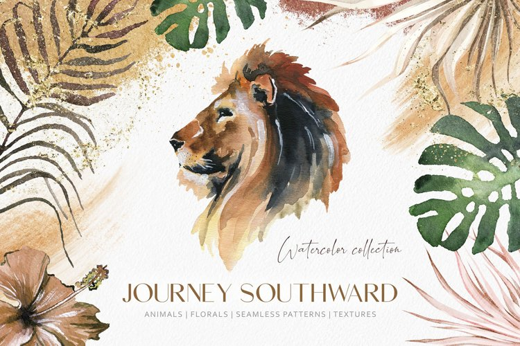 Southward Watercolor Collection