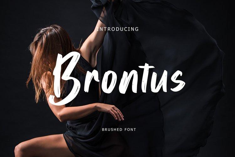 Brontus Brush Font example image 1