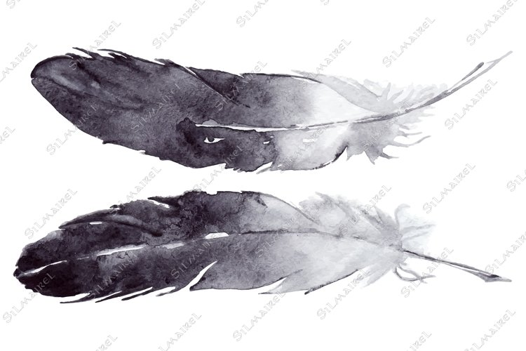 Watercolor black and white feather pair vector set isolated example image 1