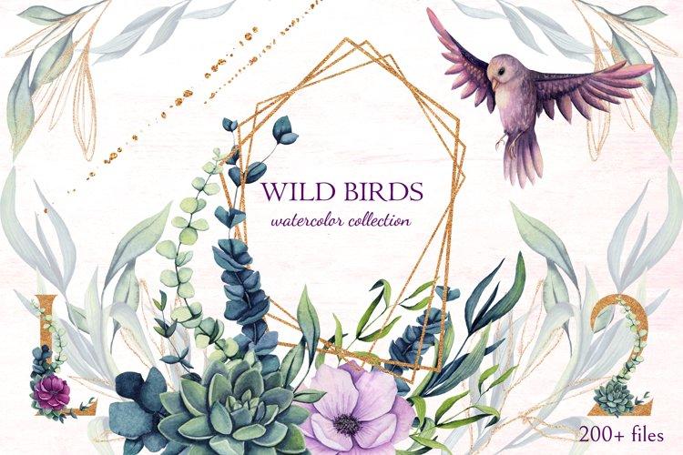 Wild Birds example image 1