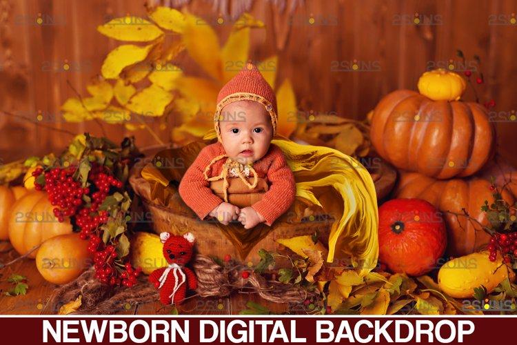 Newborn backdrop & Baby autumn backdrop, Photoshop overlay example image 1