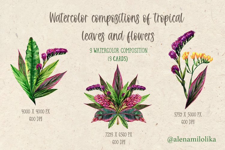 Watercolor bouquets of tropical leaves and flowers. Vintage