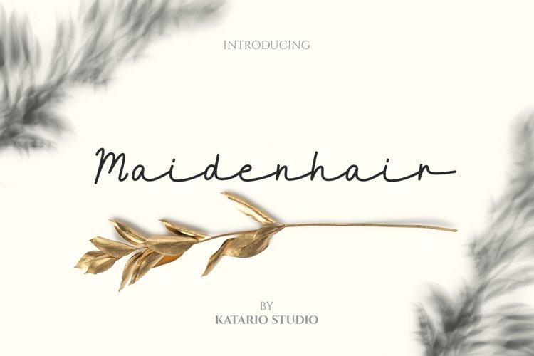Maidenhair   Monoline Web Font example image 1