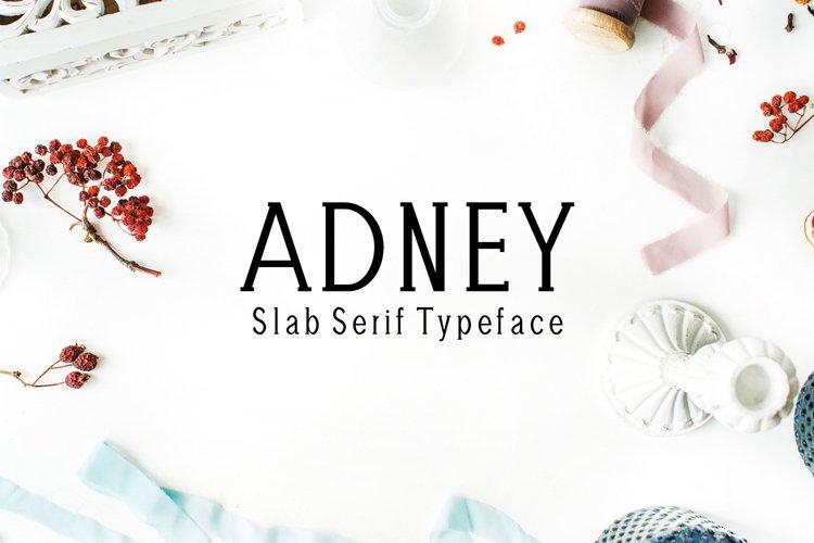 Adney Slab Serif 3 Font Family example image 1