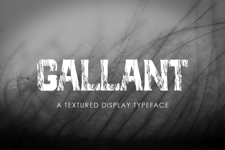 GALLANT - A Textured Display Font example image 1