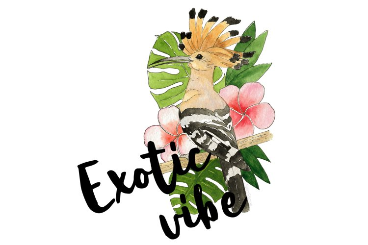 Exotic Vibe Sublimation, Exotic Bird PNG, Flowers and Bird example image 1