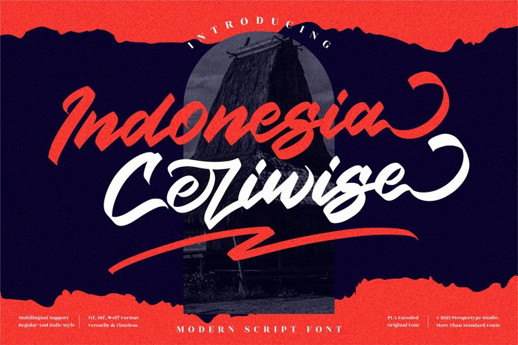 Indonesia Ceriwise - Modern Script Font example image 1