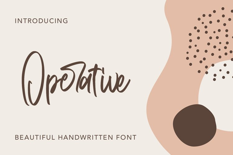 Operative - Beautiful Handwritten Font example image 1