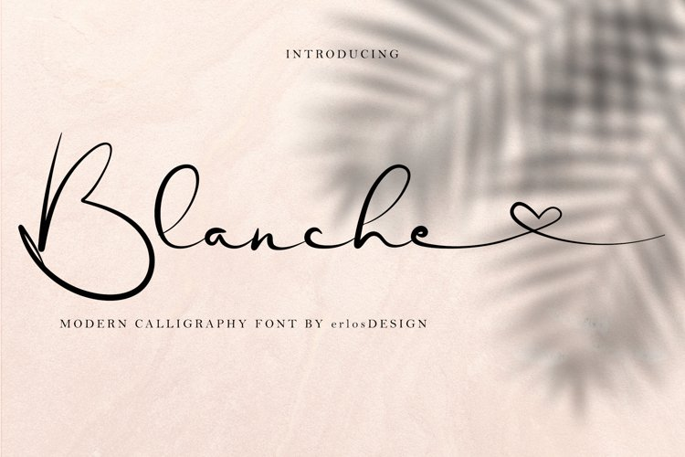 Blanche Font example image 1