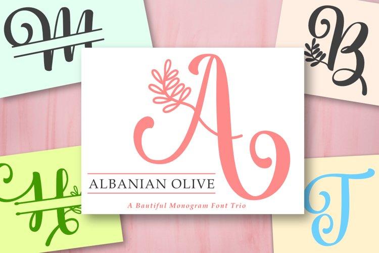 Albanian Olive Monogram   Font Trio example image 1