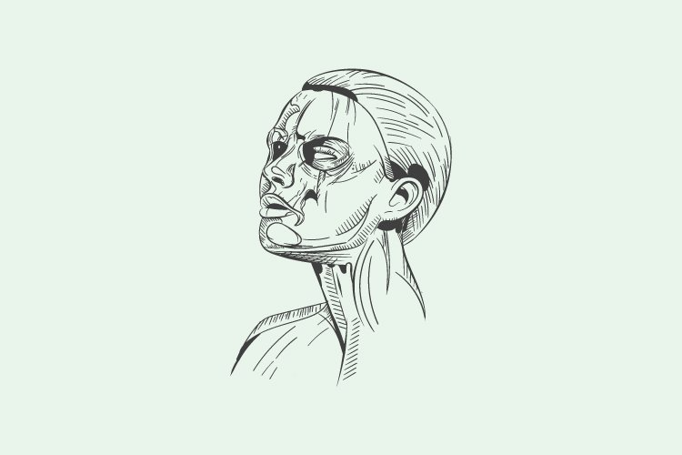 Abstract line vector face human - Eps 10 example image 1