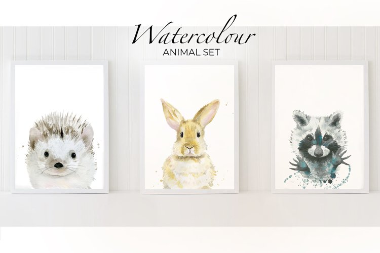 Rabbit watercolor Raccoon Hedgehog Animal watercolour print