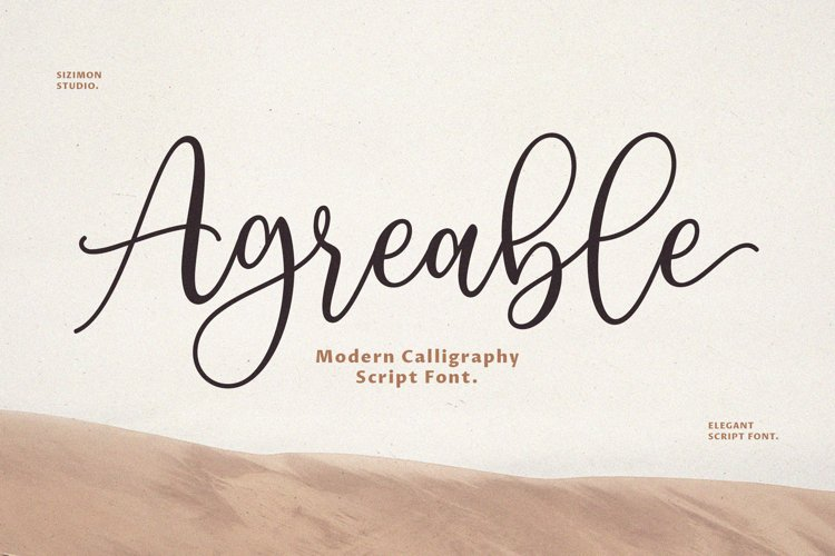Agreable Modern Script Font! example image 1