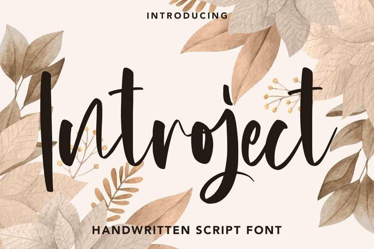 Web Font Introject - Script Font example image 1