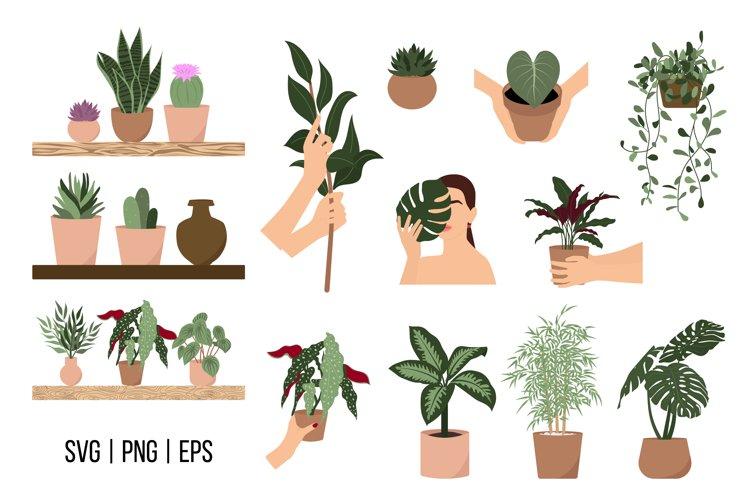 House Plants SVG, Indoor plants SVG clipart