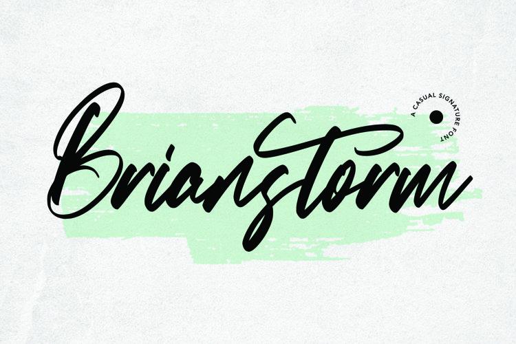 Web Font Brianstorm - Signature Font example image 1
