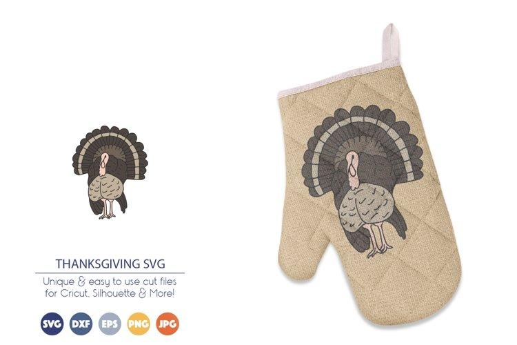 Turkey SVG | Thanksgiving SVG | Turkey Illustration