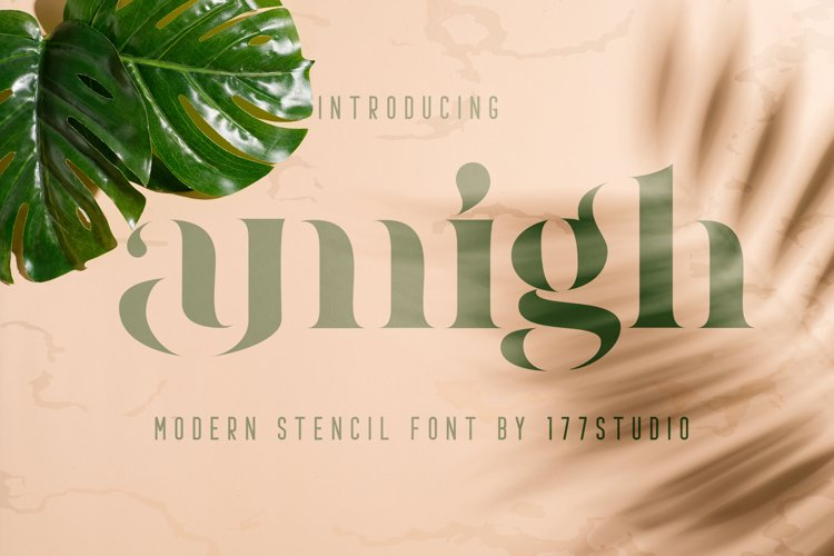 Amigh - Modern Serif Font example image 1