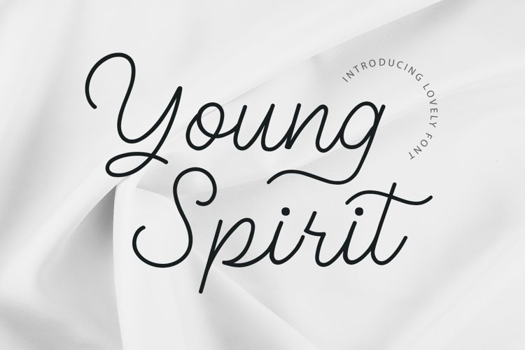 Young Spirit Handwriting Script example image 1
