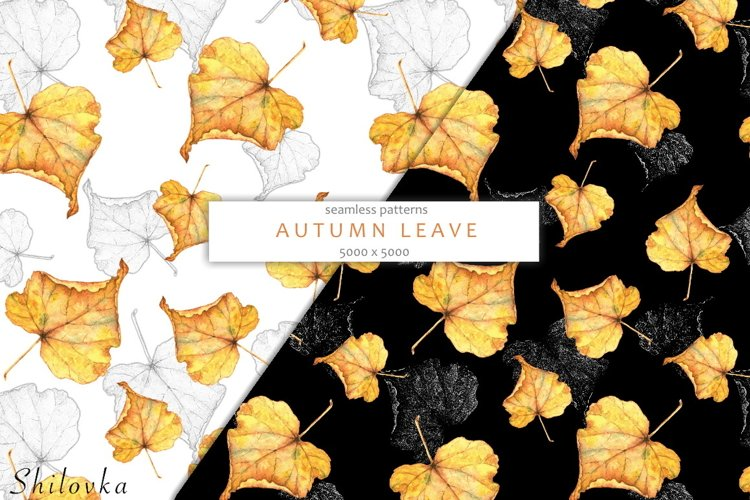 Autumn leaves. Watercolor example image 1