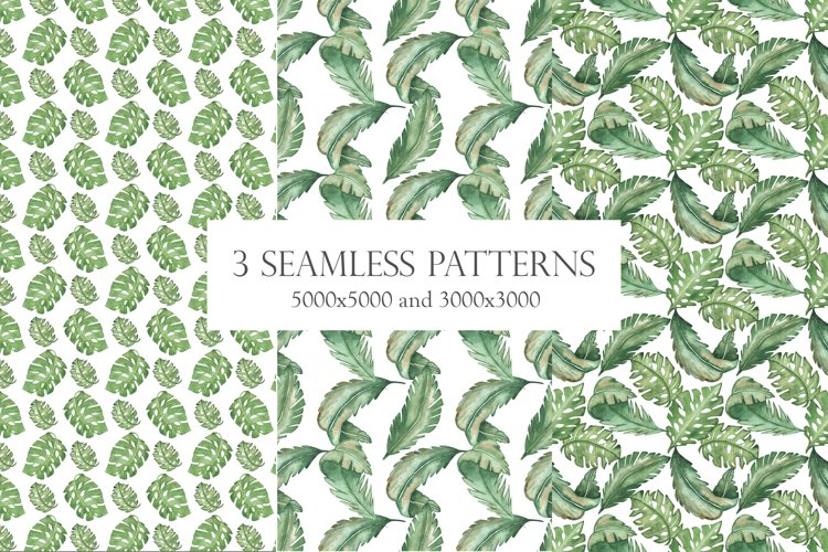 Watercolor tropical seamless pattern set green palm leaves