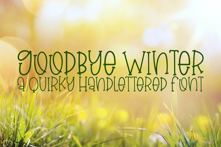 Web Font Goodbye Winter - A Quirky Hand-Lettered Font example image 1