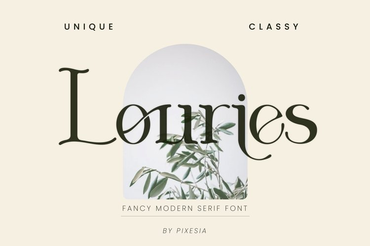 Louries - A Fancy Modern Serif Font example image 1