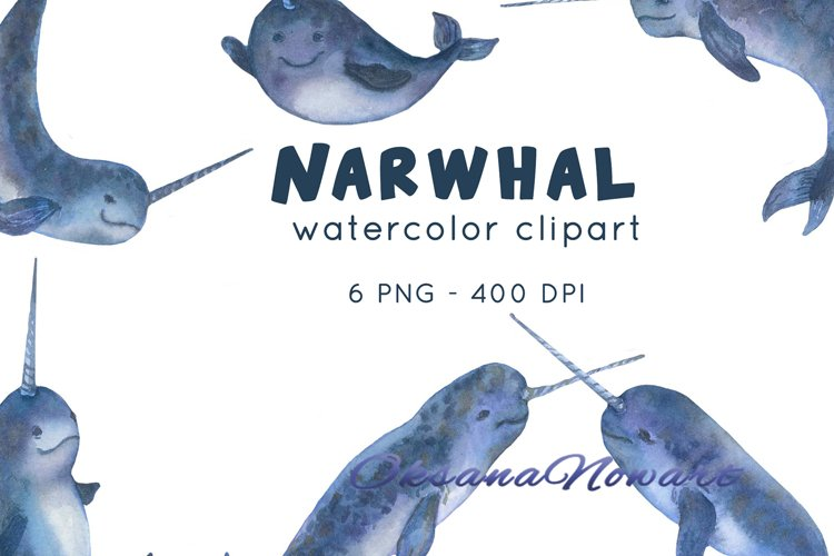 Narwhal clipart Ocean animals