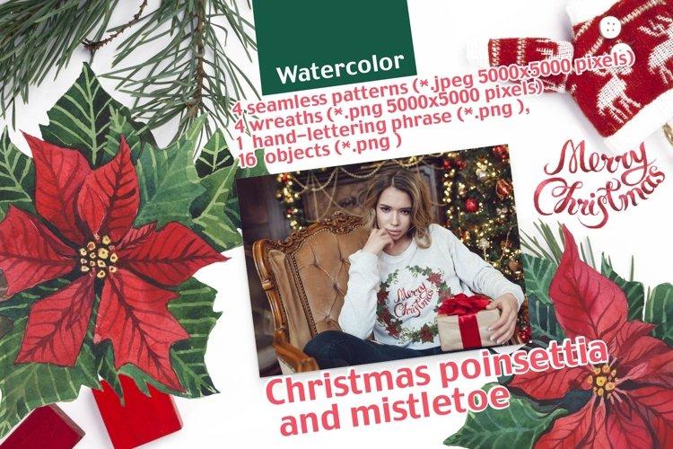 Christmas poinsettia and mistletoe