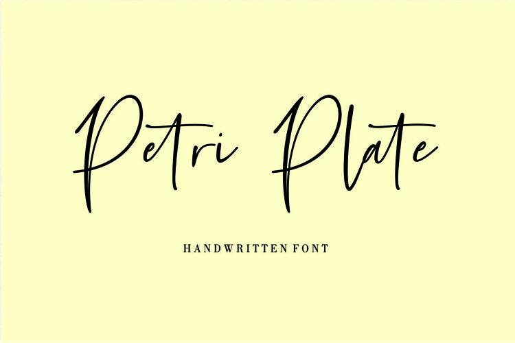 Petri Plate // Handwritten Font example image 1