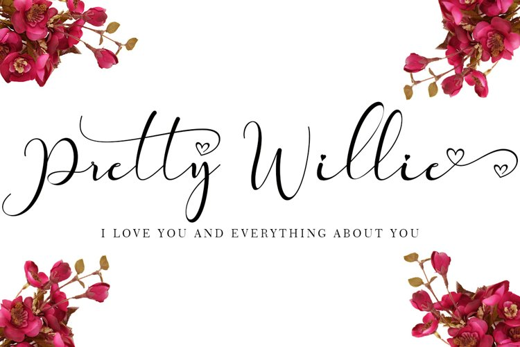Pretty Willie example image 1