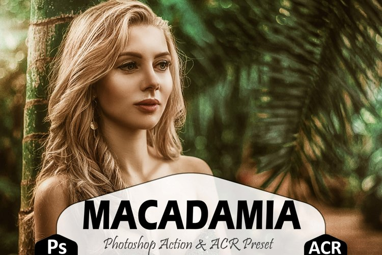 Macadamia Photoshop Actions And ACR Presets, Brown Ps action example image 1