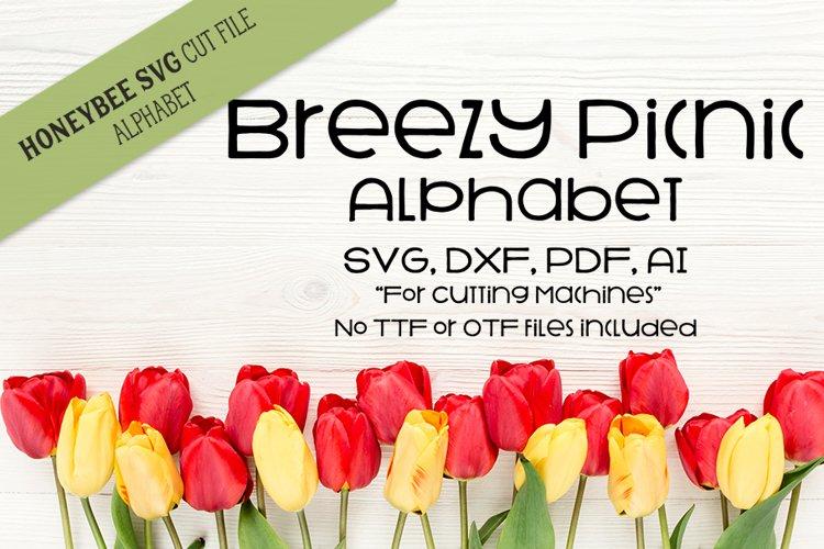 Breezy Picnic Alphabet SVG Cut Files example image 1