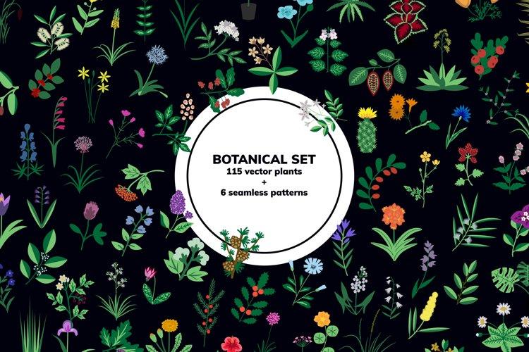 Botaincal set
