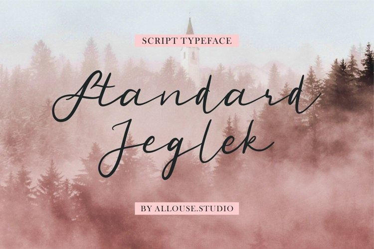 Standard Jeglek - Script Typeface example image 1