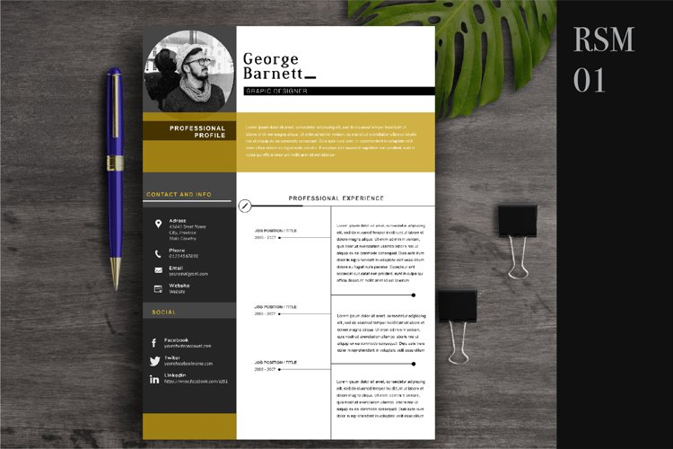 Resume Template 2 Page   CV Template example image 1