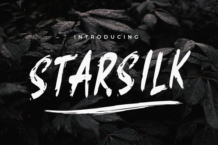 Starsilk Brush Font example image 1