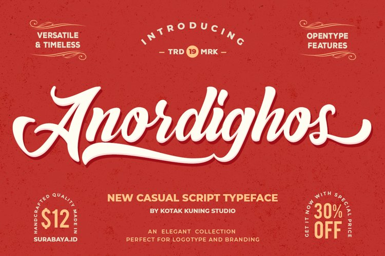 Retro Casual Script - Anordighos Font example image 1