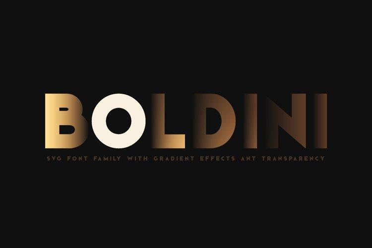 Boldini. SVG font family example image 1
