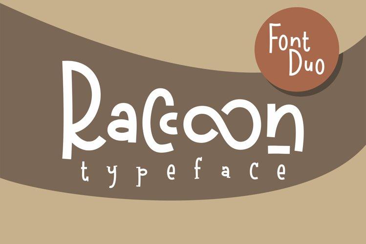 Raccoon example image 1