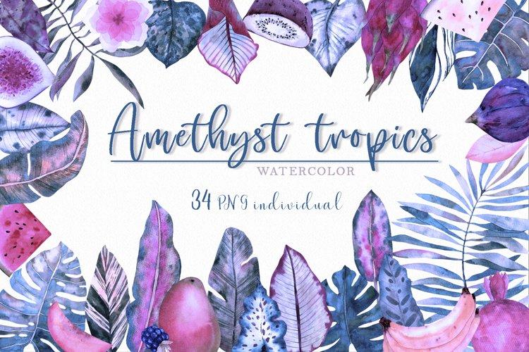 Amethyst tropics watercolor clipart