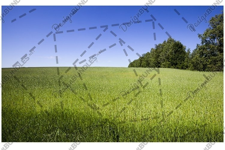 The agricultural landscape example image 1