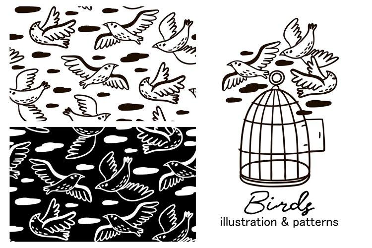 BIRDS illustration & patterns example image 1