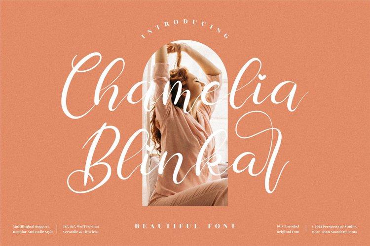 Chamelia Blinkar - Beautiful Script Font example image 1