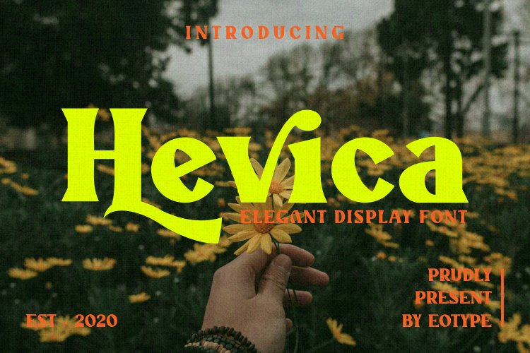 Hevica Multi Purpose Font example image 1